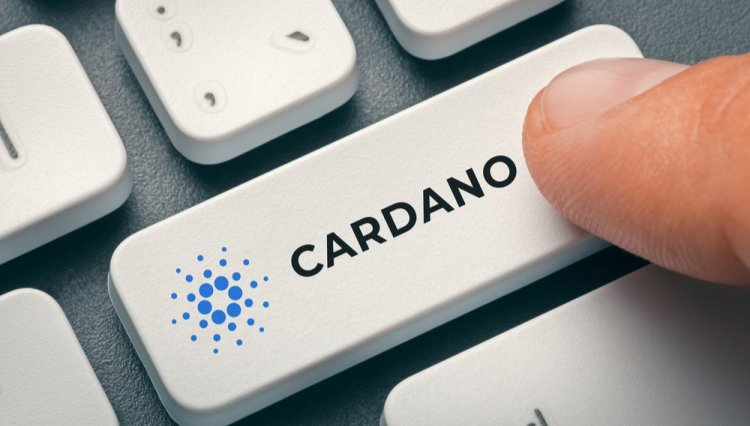 Cardano implemented new specifications.